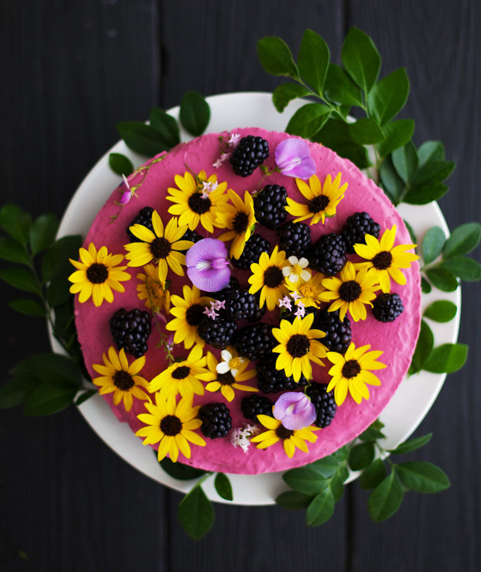 Frozen Berry Cheesecake from Vegetarian Everyday