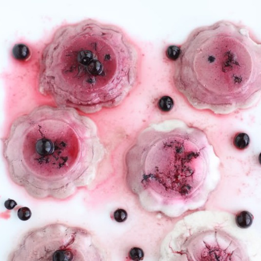 Raw Black Currant Panna Cotta