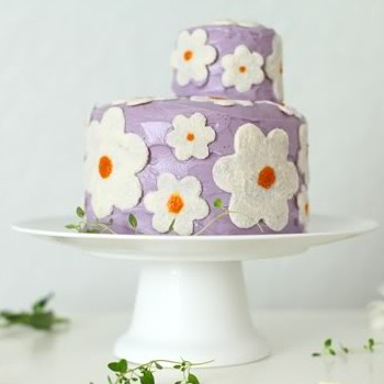 Wild Blueberry Daisy Cake and a Cookbook Giveaway