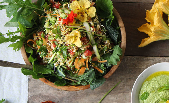 Dahl Inspired Sprouted Salad with Coriander, Mint and Sunflower Seed Dressing from The Wooden Spoon