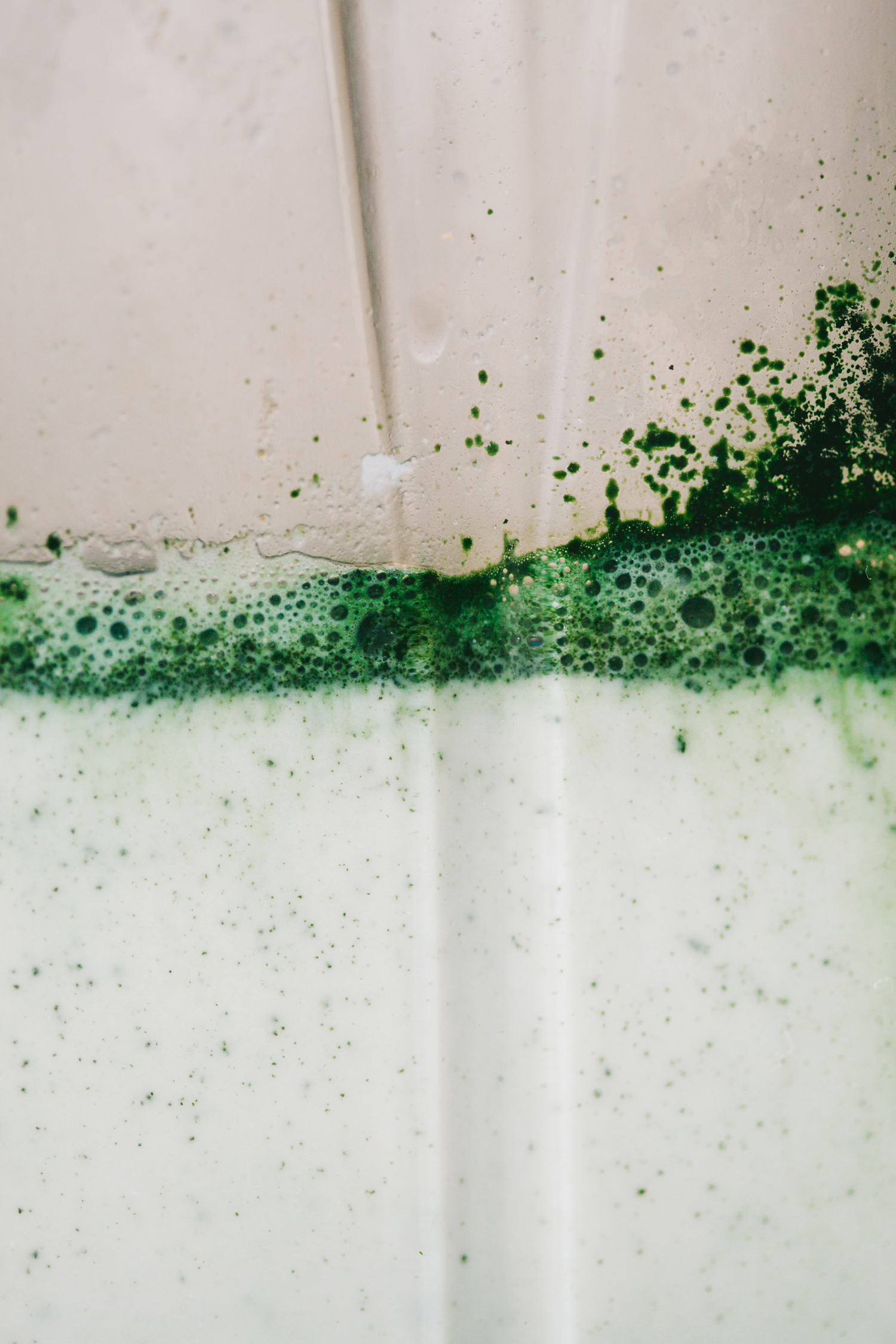 Spirulina Latte - Golubka Kitchen