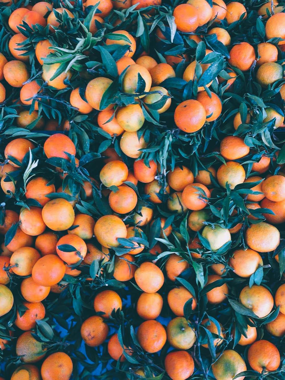 Abruzzo: Forage and Cook Retreat - Golubka Kitchen