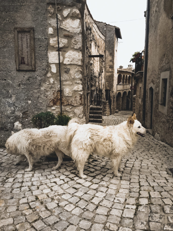 Abruzzo, Italy: Join Our Vegan/Vegetarian Forage and Cook Retreat