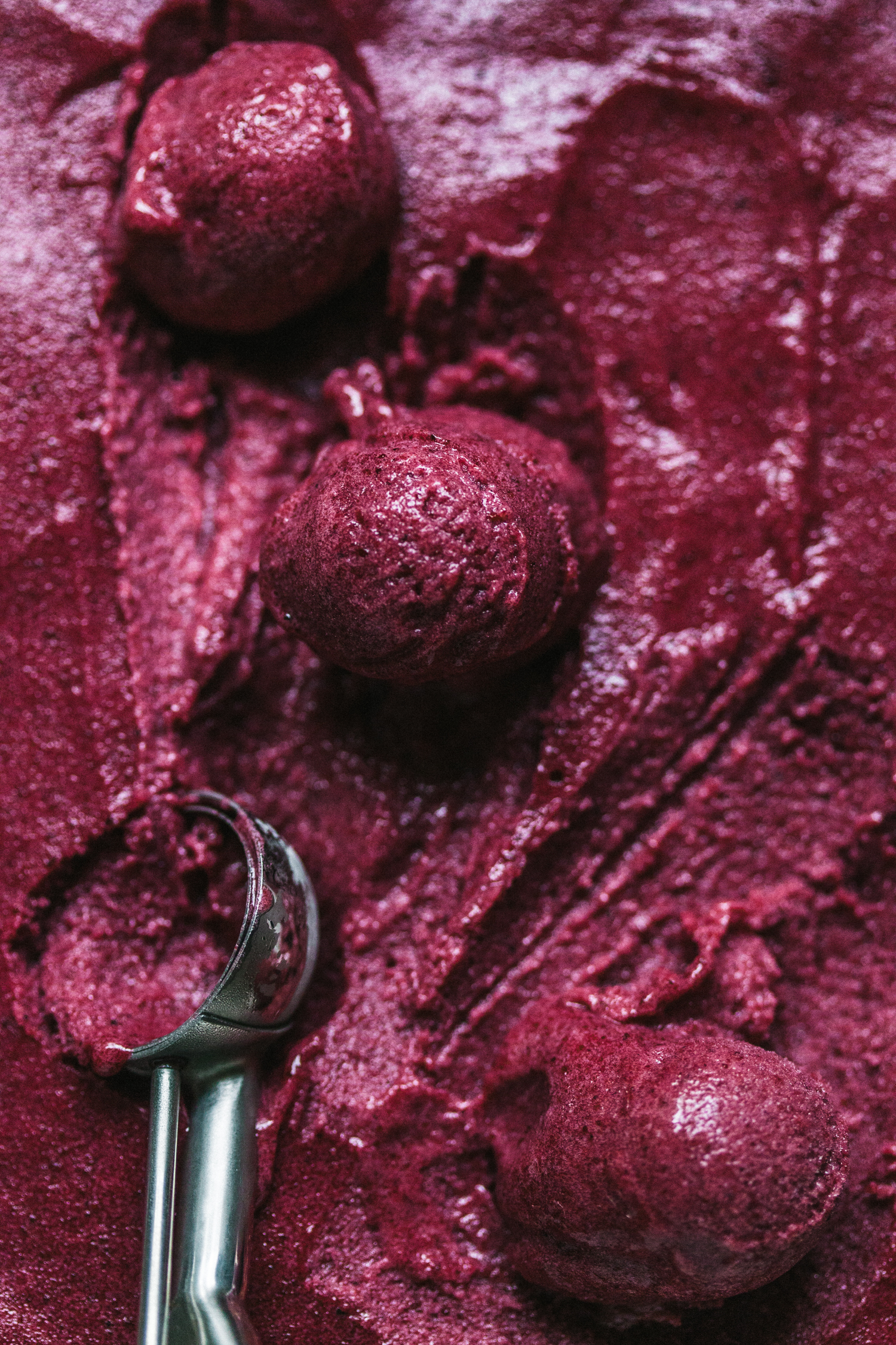 Roasted Berry Sorbet - Golubka Kitchen